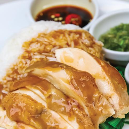 Rice with braised chicken